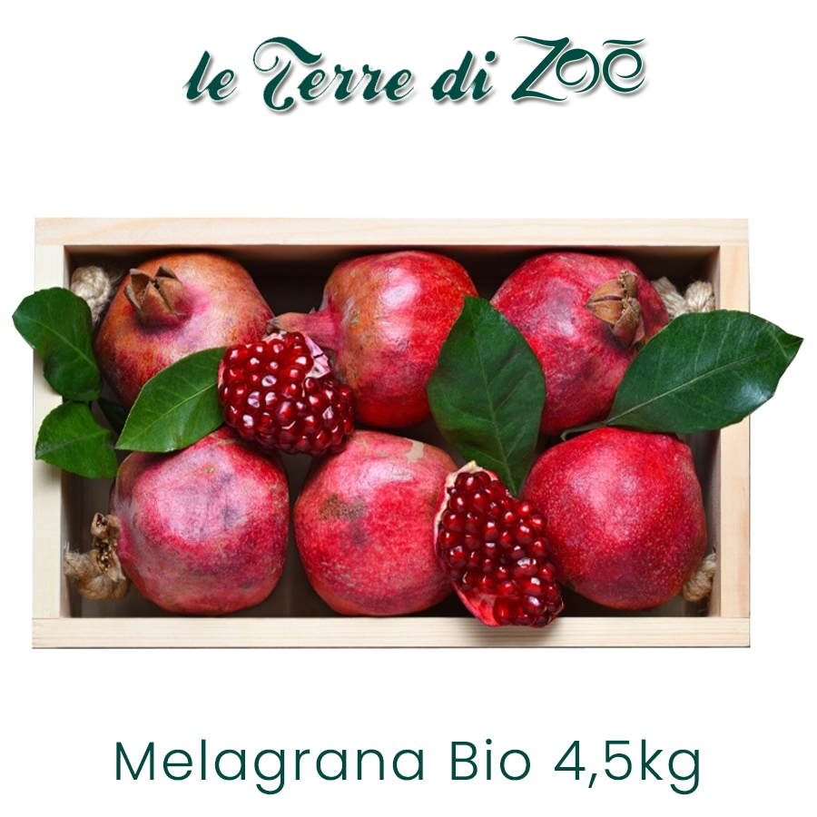 Melagrana Bio Qualità Jolly Red e Wonderfull in cassetta da 4,5Kg Le Terre di Zoè