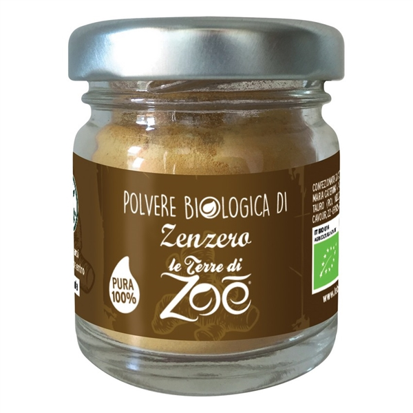 Organic powder Ginger