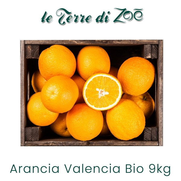 Organic Valencia Orange from Calabria in 9 kg box