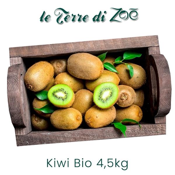 Kiwi Hayward bio de Calabre en boîtes de 4,5 kg