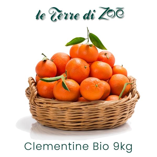 Clementine Biologiche di Calabria in cassetta da 1 kg