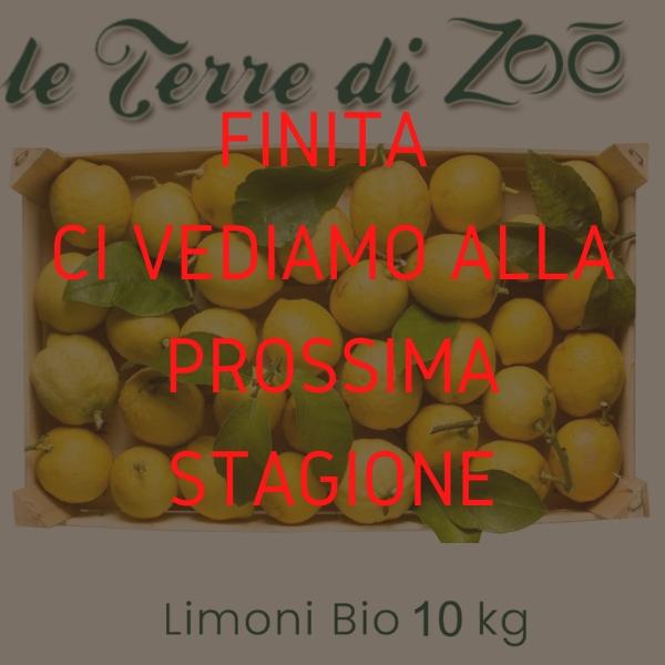 Citron de Calabre biologique en boîte de 9kg