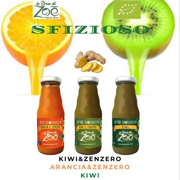 Box of 6 Delicious Juices of 200ml - Orange and Ginger; Kiwi; Kiwi and Gingere