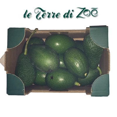 Avocado Biologico di Calabria in cassetta da 3kg
